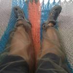 mosquitopants